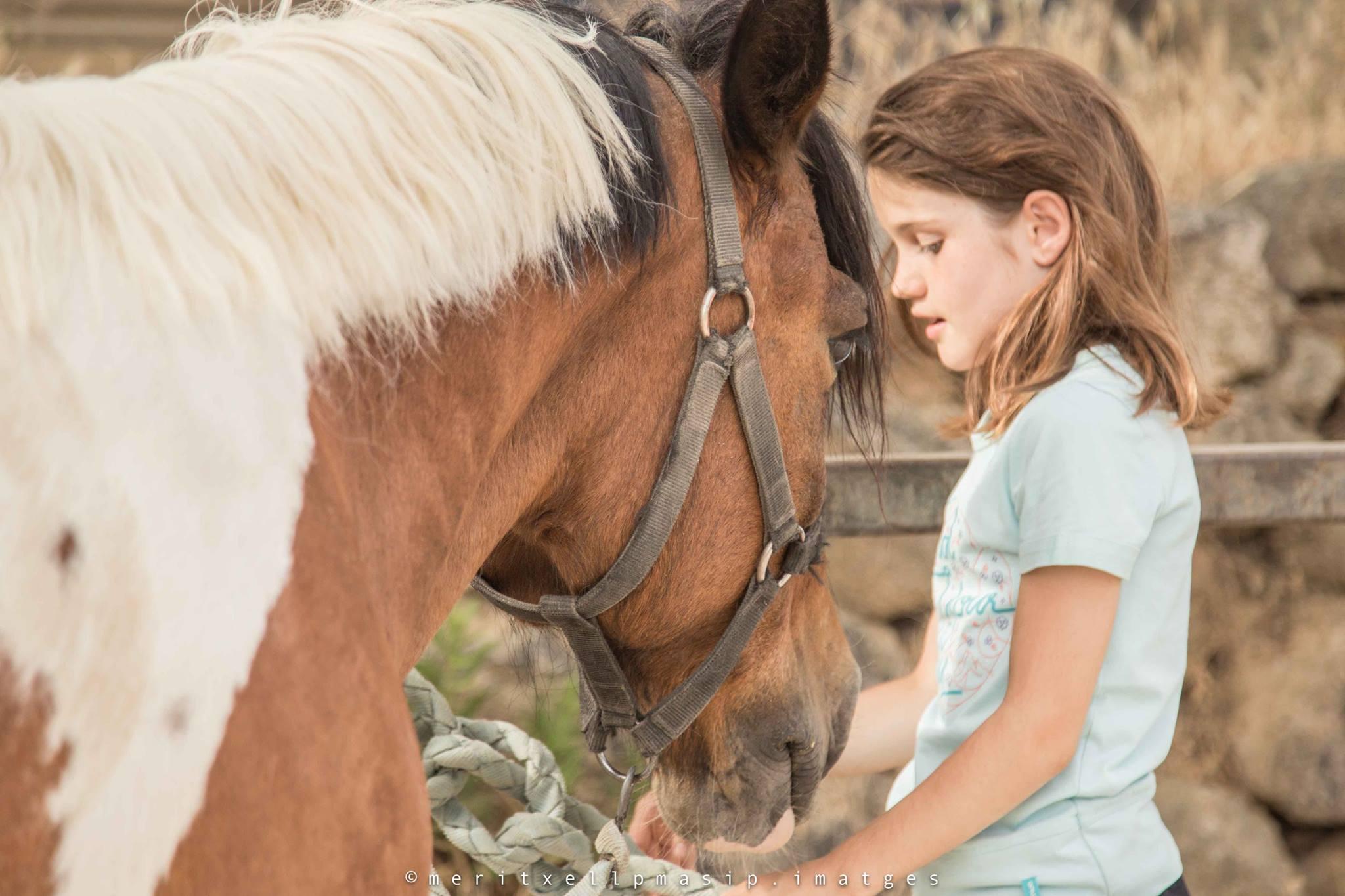 Ruta a Cavall