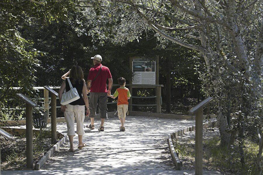L'Ecomuseu conté una representació de la majoria d'ambients naturals i humanitzats del Delta.